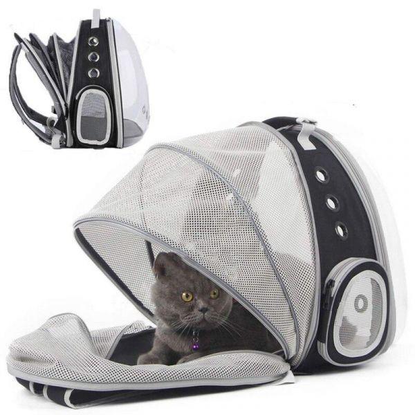 Chien Halinfer Dos Extensible Chat Sac À Dos Space Capsule Transparent Pet Carrier Pour Petit Chien