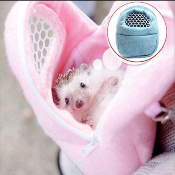 Hamsters Furet